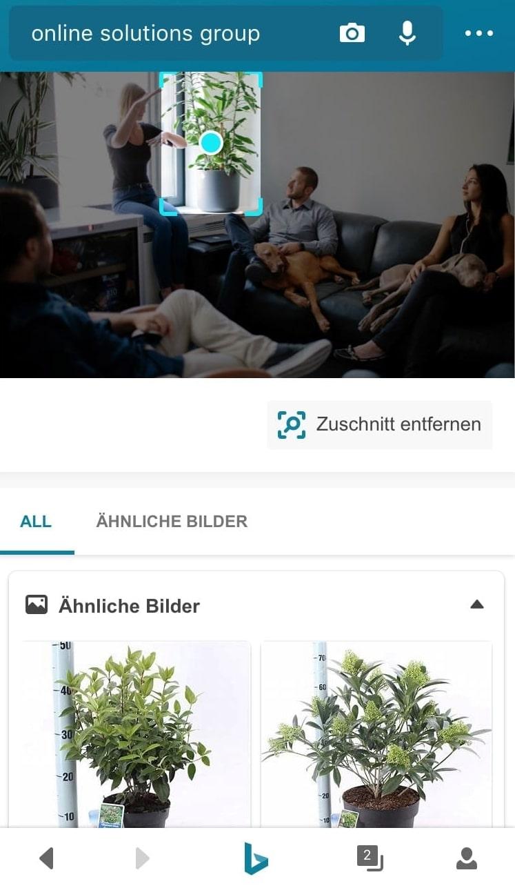 Screenshot der visuellen Suche auf Bing