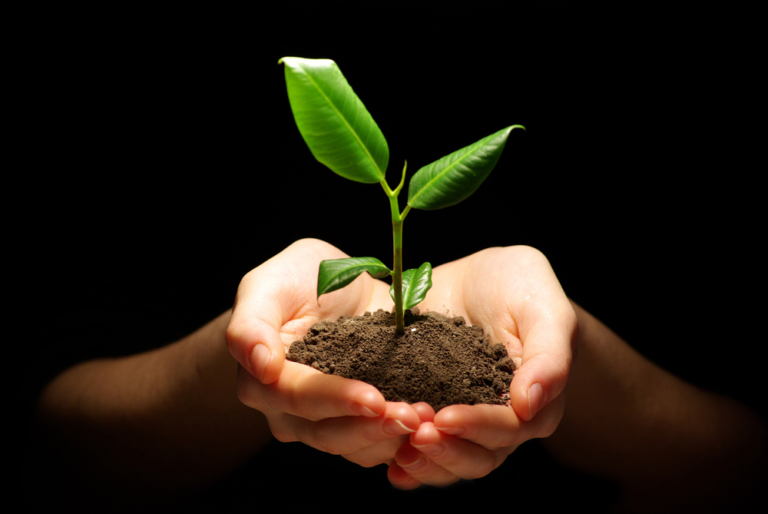 Wie Sie Ihren Evergreen-Content am Leben erhalten