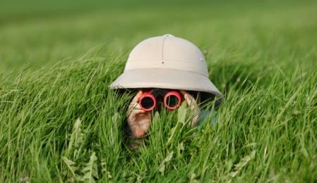Junge mit Fernglas und Tropenhut im Gras