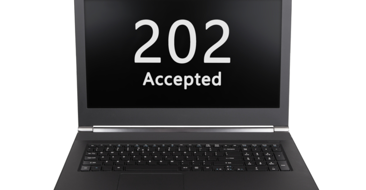 Statuscode 202 Accepted