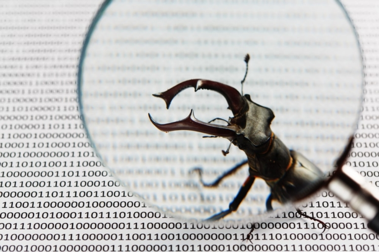Wordpress-Bug-Fehler-News-min