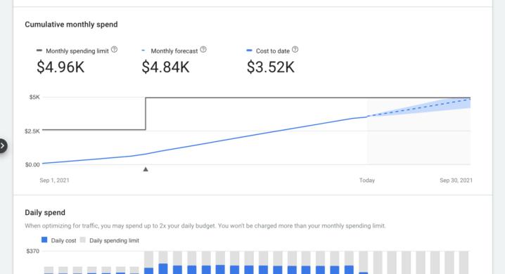 Übersicht monatliche Ausgaben Google Ads