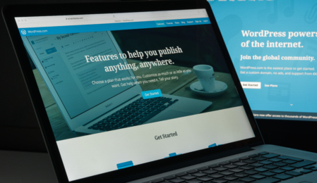 WordPress entfernt Feature