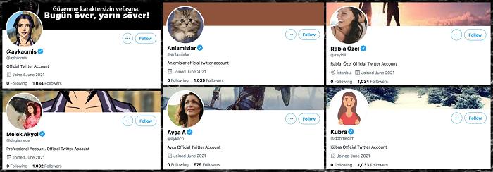 Twitter Verifizierungsprozess bleibt problematisch